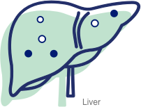Icon of neurotoxins in a liver